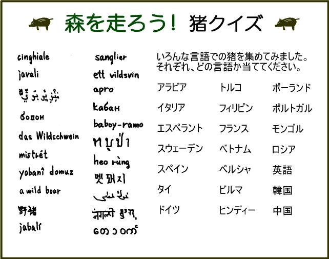 2007_inoshishi_quiz