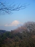 2010-01-24-03-s.jpg
