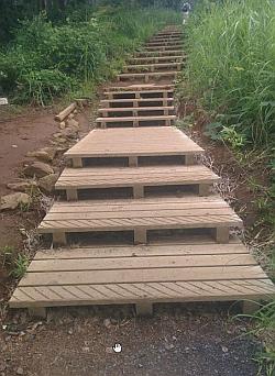 尾根道階段