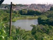大池と本牧