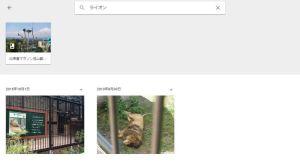 ライオンでフォト検索